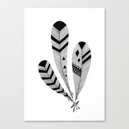 Bound Feathers Canvas Print