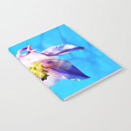 Under the sun Notebook