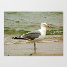 Perfect Posture Canvas Print