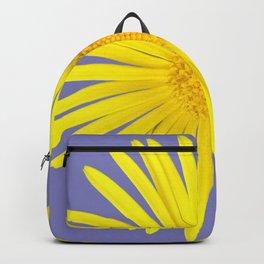 Daisy doronicum orientale Backpack