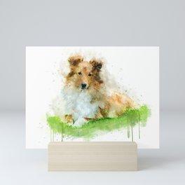 Shetland Sheepdog / sheltie Mini Art Print