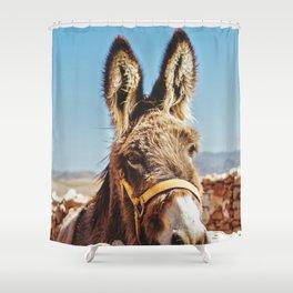 Donkey photo Shower Curtain