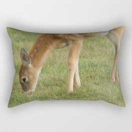 Baby Deer Nibbling Grass Doe Tan Fawn Face Looking Curious Cute Wildlife Digital Photography Rectangular Pillow