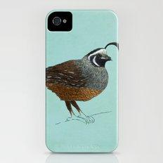 Quail iPhone (4, 4s) Slim Case