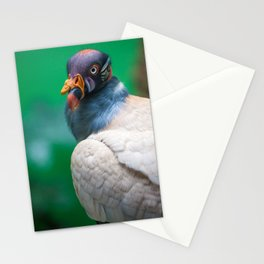 The George Clooney of King Vultures Stationery Cards