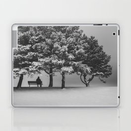 Winter Solitude Laptop & iPad Skin