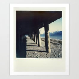 Homer, AK - Polaroid Art Print