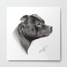 Staffy Metal Print
