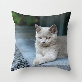 Bikkel the cat ! Throw Pillow