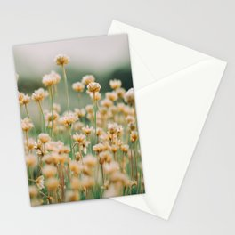 Vintage Chamomile Wildflowers Stationery Cards