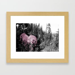 Flowers on the Mountain Framed Art Print