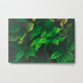 Mystical Leaves Metal Print