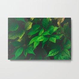 Mystical Leaves Metal Print