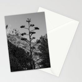 Blooming Century Plant in Black and White Stationery Cards