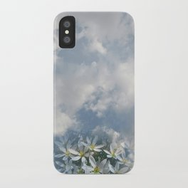 Window Curtains - Morning Fresh iPhone Case