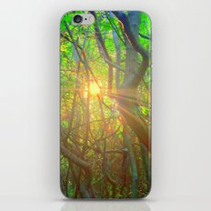 Peeking Sun  iPhone & iPod Skin