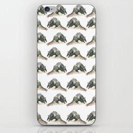 armadillo! iPhone Skin