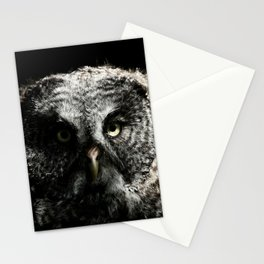 The phantom of the north Stationery Cards