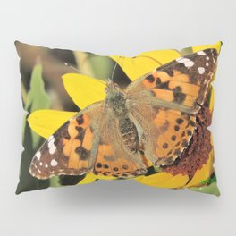 A Painted Lady Sunning on Desert Sunflower Pillow Sham