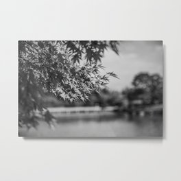 Autumn Scene (Black and White) Metal Print