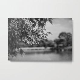 Autumn Scene (Black and White) Metal Print