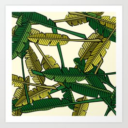 Botany: Banana Leaves Art Print