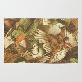 Red-Throated, Black-capped, Spotted, Barred Rug