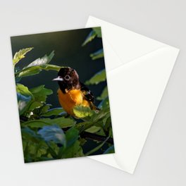 Baltimore Oriole in the Leaves Stationery Cards