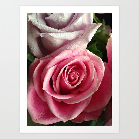 Spring Petals Art Print