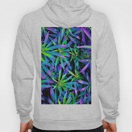 Neon Cannabis Hoody