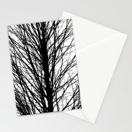 Branches 5 Stationery Cards