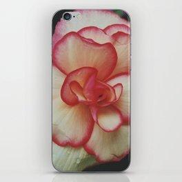 Raindrops on Roses iPhone Skin