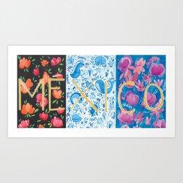 MÉXICO Art Print