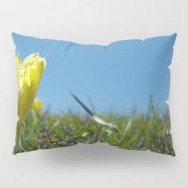 Glimpse Pillow Sham