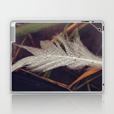 Beach Feathers 3 Laptop & iPad Skin