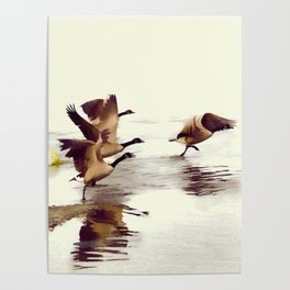 The Take Off - Wild Geese Poster