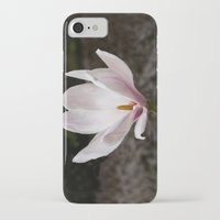 magnolia iPhone & iPod Cases featuring Magnolia by Guna Andersone & Mario Raats - G&M Studi