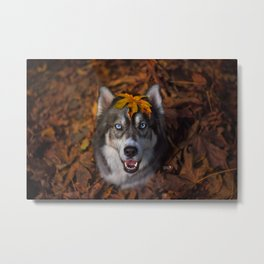 Happy Autumn Metal Print