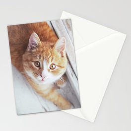 Cute cat Kristofferson Stationery Cards
