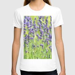 Lavender 0137 T-shirt