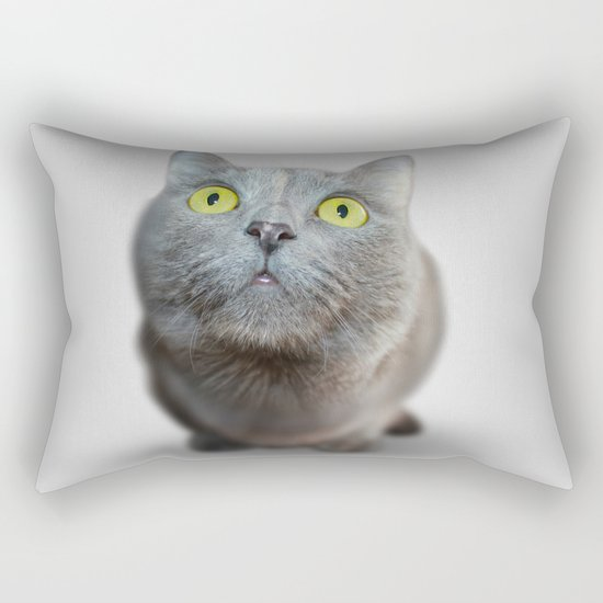 The Cat's Stare Rectangular Pillow