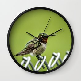 Hummingbird on a Fence Wall Clock