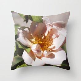 Full Blown (Summer Rose) Throw Pillow