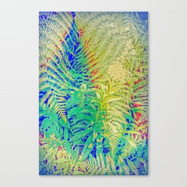 Fern and Fireweed 01 Canvas Print