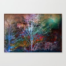 trees in the night Canvas Print