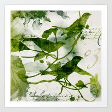 Birds (square 3) Art Print
