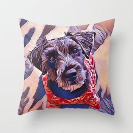 The Schnoodle - A Schnauzer Poodle Mix Breed Throw Pillow