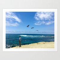 3 Pelicans at La Jolla Cove Art Print