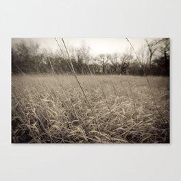 Dark Plains Canvas Print