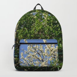 spring in Belgrade with flowering branches Backpack